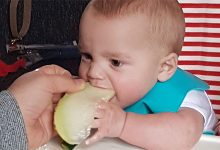 A mothers guide to baby lead weaning